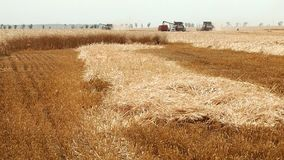 Agriculture and harvester stock footage