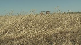 Combine harvester gathers the wheat crop. Agriculture and harvester. Combine harvester gathers the wheat crop stock video