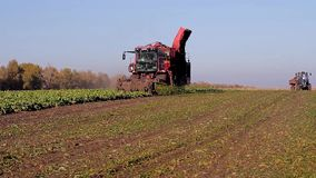 Agriculture and harvesting stock footage
