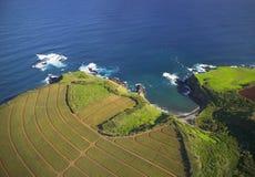 Agriculture hawaïenne côtière Photographie stock libre de droits