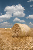 Agriculture - Haystack. On harvested field stock photos