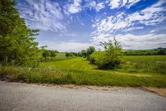 Agriculture on the hills of Tuscany and Romagna Apennines Royalty Free Stock Image