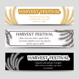 Agriculture horizontal banner set with wheat Stock Photos