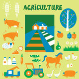 Agriculture icons and pictures set Royalty Free Stock Photography