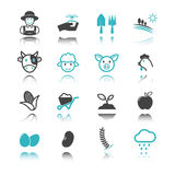 Agriculture icons with reflection Stock Images