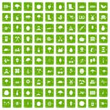 100 agriculture icons set grunge green. 100 agriculture icons set in grunge style green color isolated on white background vector illustration Royalty Free Stock Photos