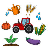 Agriculture industry and farming food Royalty Free Stock Images