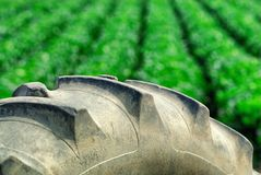 Tractor wheel and rows of green crops behind. The agriculture industry and farming portrayed in details of machinery and crops Royalty Free Stock Photo