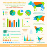 Agriculture infographic elements Royalty Free Stock Photography