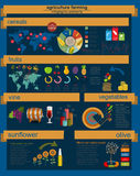 Agriculture infographics_13_1 Royalty Free Stock Photo