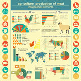 Agriculture, infographics de production animale Image stock