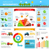 Agriculture Infographics Set Stock Photo