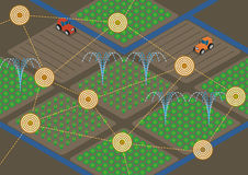 Agriculture with IoT(Internet of Things), sensor network, water sprinkling Royalty Free Stock Image