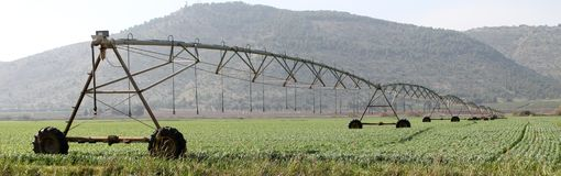 Agriculture Irrigation Sprinklers. Countryside agriculture and growing field with irrigation sprinklers Stock Images