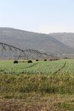 Agriculture Irrigation Sprinklers Stock Photography