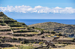 Agriculture on the Isla del Sol on Lake Titicaca in Bolivia Stock Photos