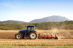 Agriculture labourant l'entraîneur sur des gisements de céréale de blé Photos libres de droits