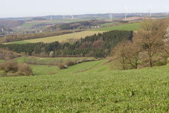 Agriculture landscape Royalty Free Stock Image