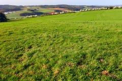 Agriculture landscape. In early morning sun, near Prüm, Rheinland-Pfalz, Germany Royalty Free Stock Photo