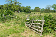 Agriculture landscape with fence Stock Images