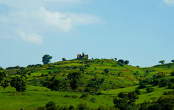 Agriculture landscape with Guzara castle and fields of teff in Ethiopia. Agriculture landscape with Guzara castle and fields of teff , Ethiopia Royalty Free Stock Images