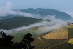 Agriculture landscape mountain view with cloud Stock Photography