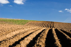 Agriculture landscape - ploughed field. Newly ploughed field with blue sky Stock Image