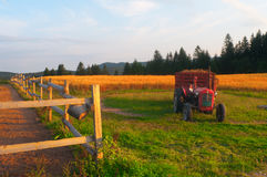 Agriculture landscape - tractor on the meadow Stock Image