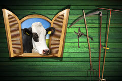 Agriculture and Livestock Concept with Open Window Stock Image