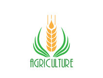 Agriculture Logo Template Design. Stock Images