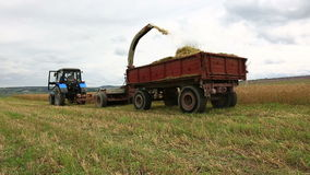 Agriculture machinery harvesting at farmland stock video footage