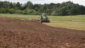 Agriculture machinery plow field stork look food stock video