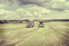 Agriculture machines collect hay. Stock Photos
