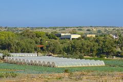 Agriculture in Malta. Fields and agriculture in Malta Stock Photography