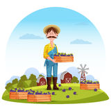 Agriculture man on field, farmer harvester. Worker or gardener, farmer harvesting healthy plum on field in front of barn or granary, mill. Perfect for agrarian Royalty Free Stock Photos