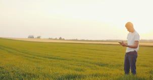 Agriculture - Medium Shoot of Farmer using digital tablet in field. stock footage