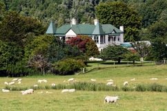 Agriculture in New Zealand NZ NZL Stock Photography