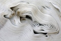 Agriculture non woven fabric detail. Texture Stock Image
