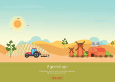 Agriculture with Organic products and farmhouse. Agriculture with Organic products and farmhouse on rural landscape, agriculture vector illustration Royalty Free Stock Image