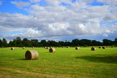 Agriculture in Oxford III Royalty Free Stock Image