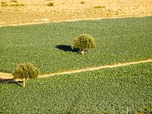Agriculture and peace in the countryside stock images