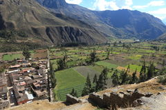 Agriculture in Peru Stock Image