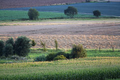 Agriculture pittoresque Image stock