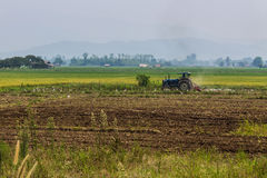 Agriculture plowing tractor on wheat cereal fields Stock Images