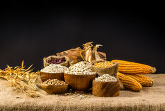 Agriculture products,grains and cereal Royalty Free Stock Photography