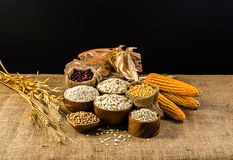 Agriculture products,grains and cereal Stock Images