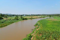 Agriculture river  fields. River between agriculture fields Mountain background Stock Images