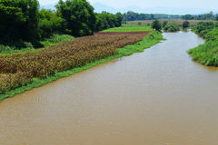 Agriculture river  fields. River between agriculture fields Mountain background Royalty Free Stock Images