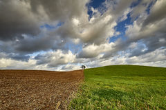 Agriculture - rolling hills with fields in sunset light Royalty Free Stock Photography