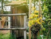 Agriculture saine d'architecture de jardin Photographie stock libre de droits